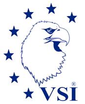 VSI_Logo_web